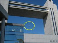 名古屋国際会議場の上空を飛行するMuPAL-ε