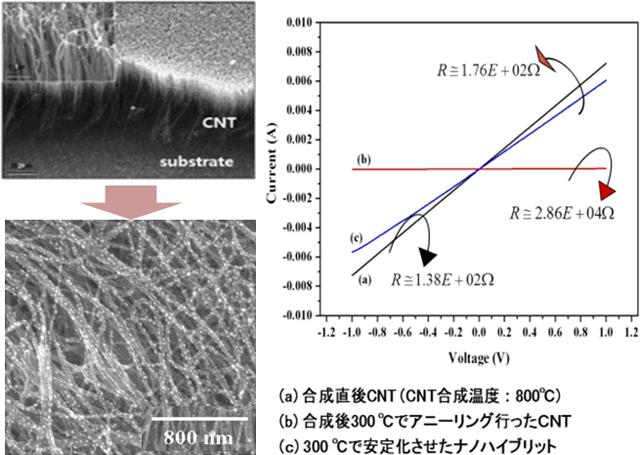ナノカーボン機能性複合材料 | ...